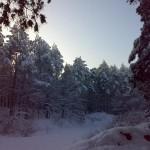 Zima na Roztoczu
